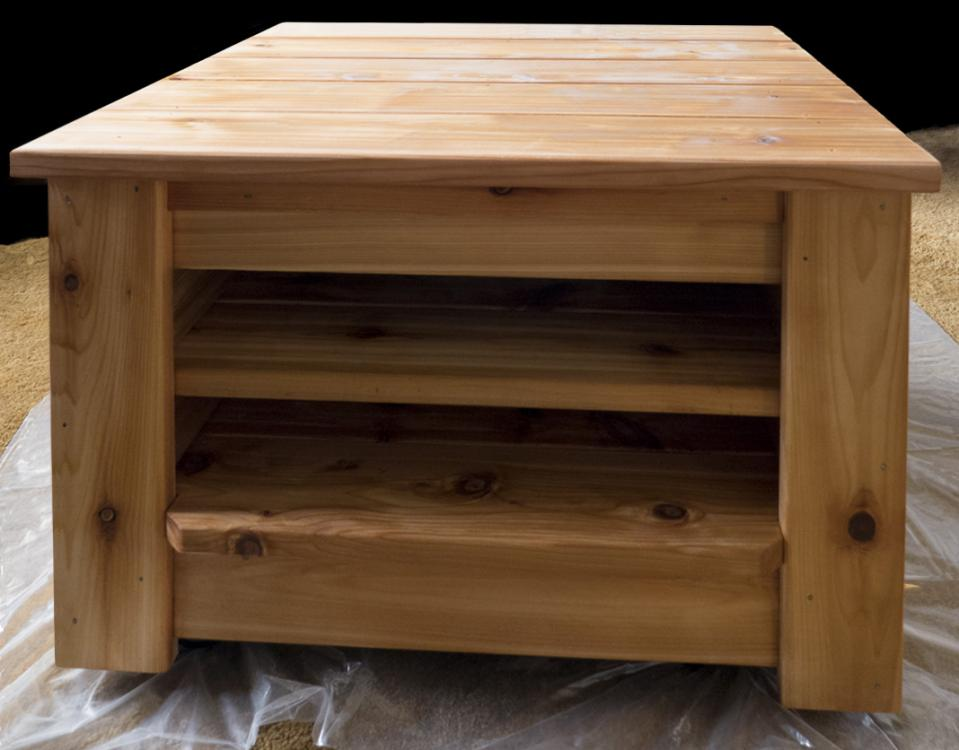 Rolling Cart 1 Coat of Finish.jpg
