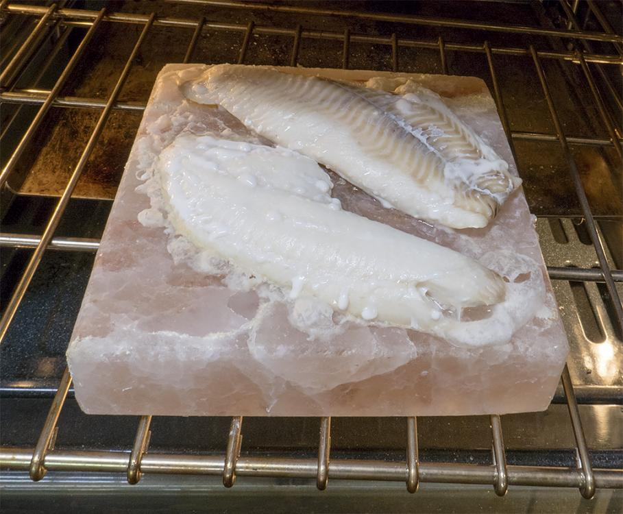 Fish on Salt Block.jpg