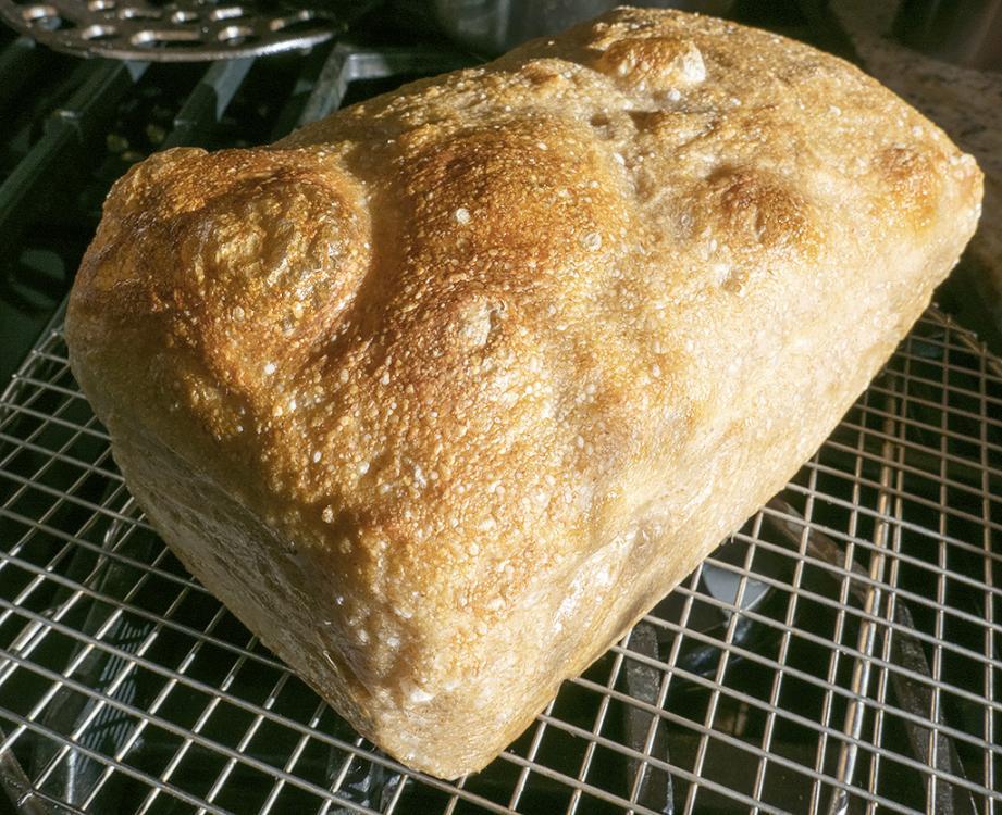 Field Blend Second Loaf.jpg