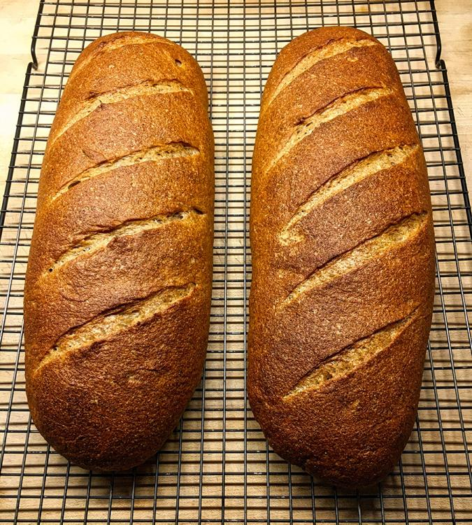 loaves.thumb.jpeg.6f5430dc62cf051d71cca95a1d1f6176.jpeg