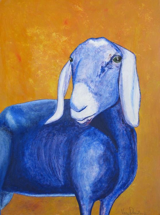 blue+goat+purple+blue+orange.jpg